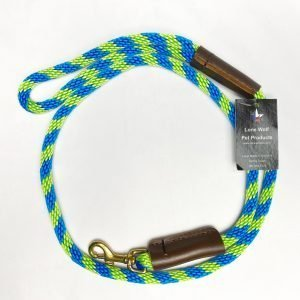 Blue and Green Leash